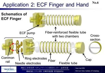ECF finger and hand